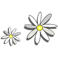 KiTa Gänseblümchen Logo